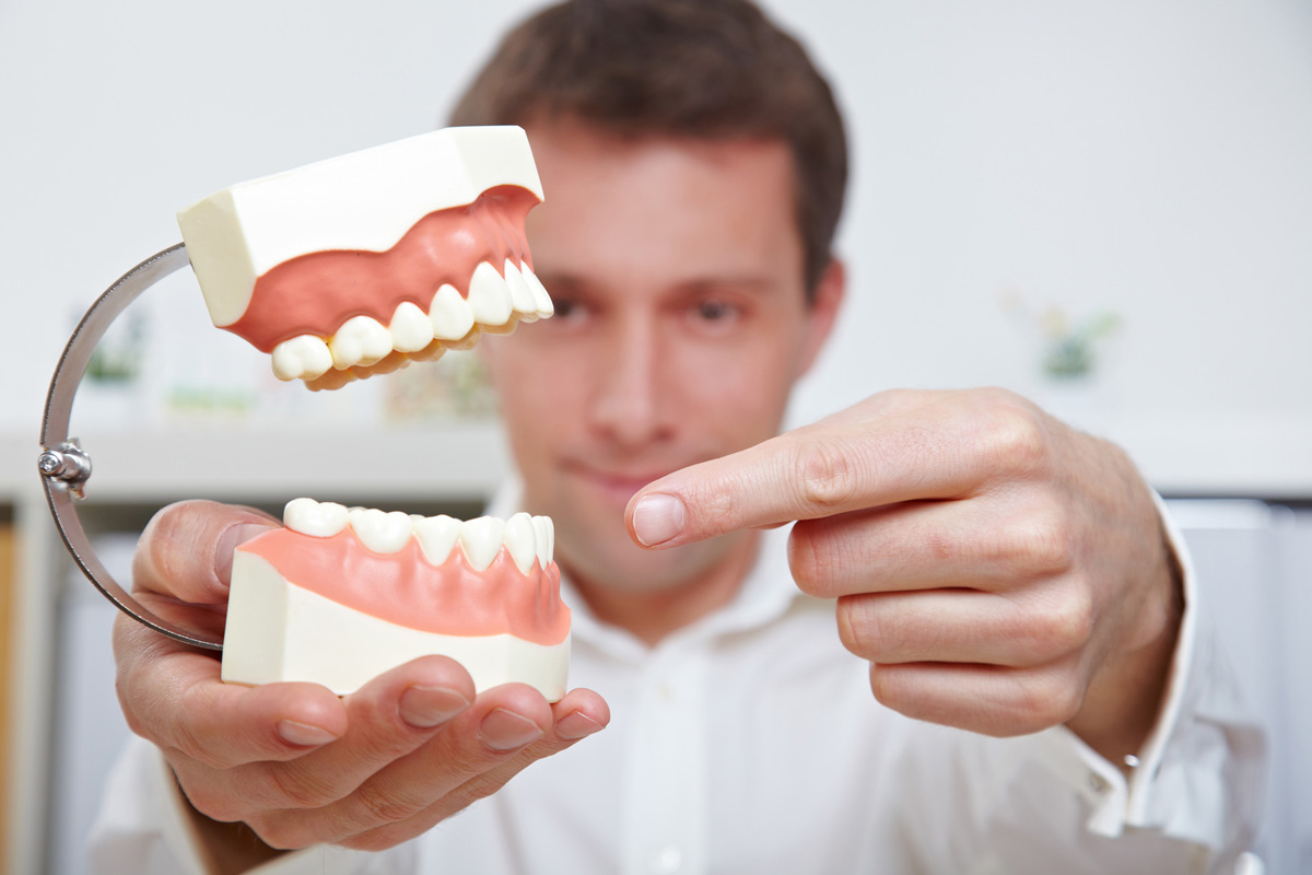 Our Placerville dentists can help you understand your teeth.