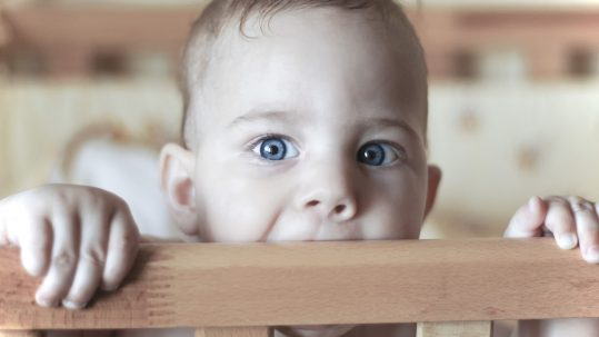 Babies often chew objects in their environment when they are teething.